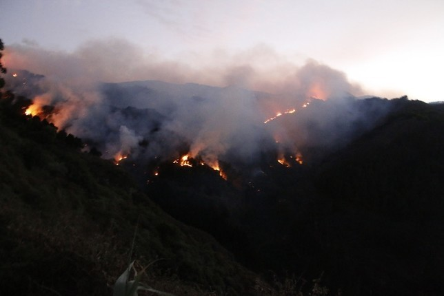 Un cable eléctrico pudo originar el fuego de Gran Canaria