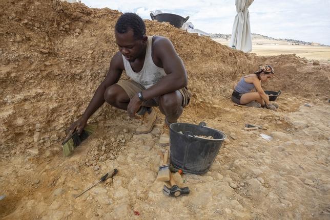 Albalá revela nuevas ocupaciones de homo erectus tardío