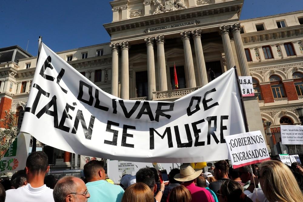 Los olivareros se manifiestan en Madrid