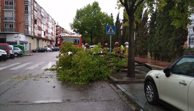 Lluvia y viento en Valladolid.