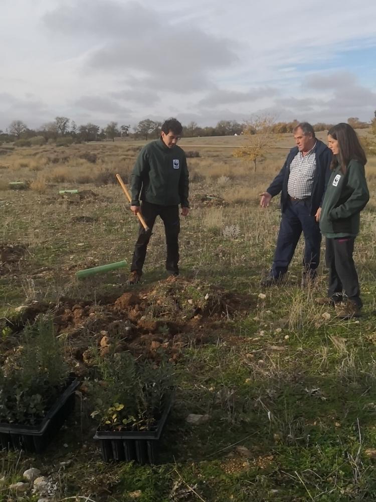 WWF planta árboles en Las Tablas contra el cambio climático
