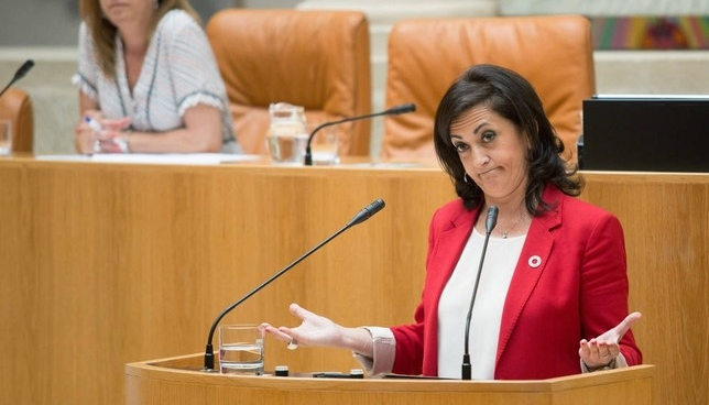 "La socialista Andreu se refiere a UPN como ""independentista"""