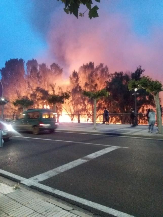 Los bomberos acaban con cuatro incendios de pelusas en 24 h.