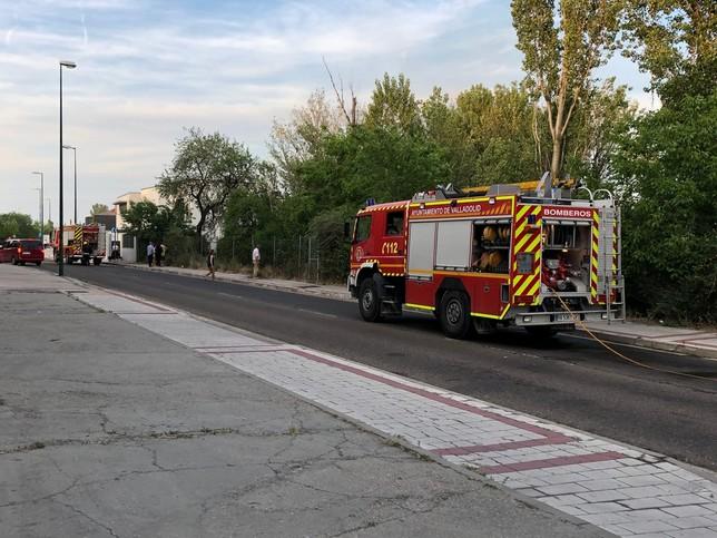 Un fuego por pelusas pone en riesgo casas en el Cabildo