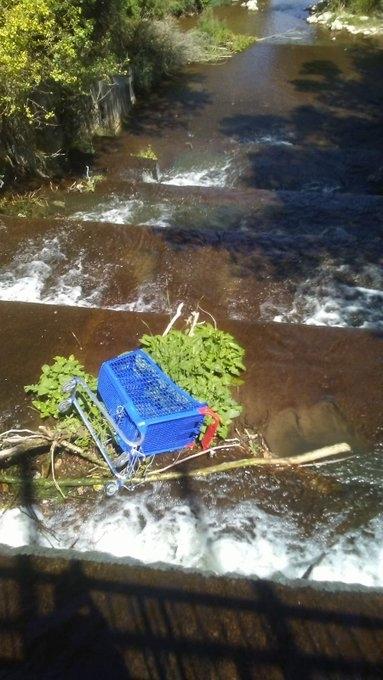 Los vecinos de Rondilla denuncia la suciedad en la Chopera