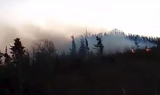 Piden ayuda aérea para un incendio en Goizueta