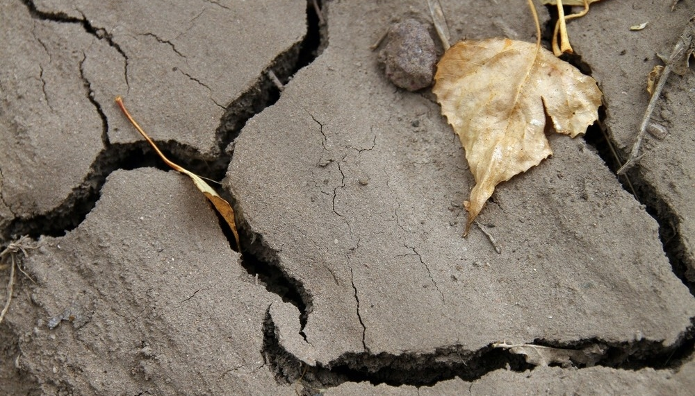 El cambio climático avanza y
