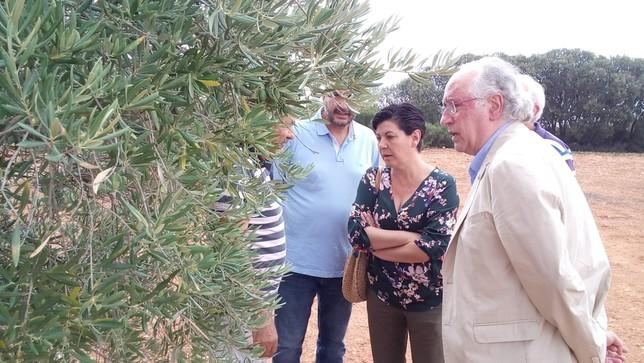 Junta y Diputación dan su apoyo a Montiel tras el granizo