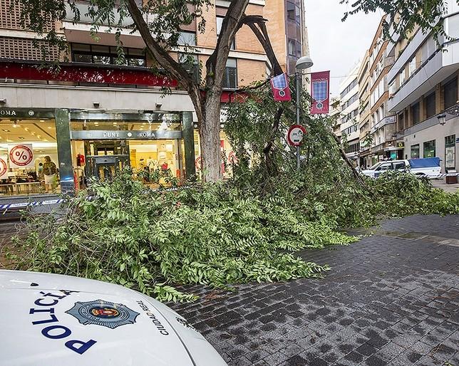La lluvia reapareció tras 74 días junto a un fuerte viento