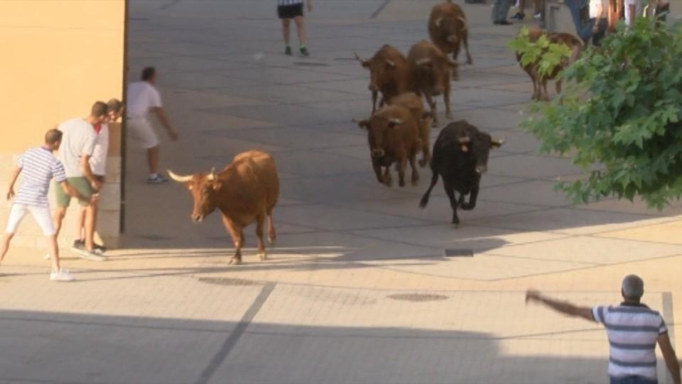 Comienzan las fiestas de Zizur con el 'sí' a las vaquillas