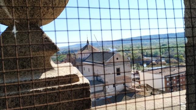 La torre de La Colegial se abrirá al turismo