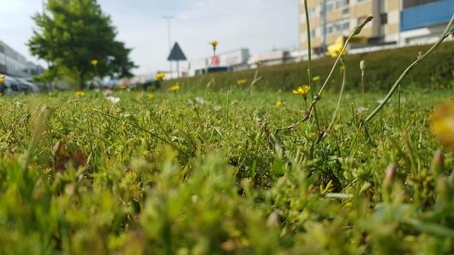 El calor llega para quedarse: aviso amarillo en Navarra