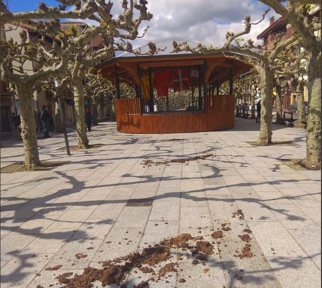 Esparcen estiércol en un acto del PP en Etxarri-Aranatz