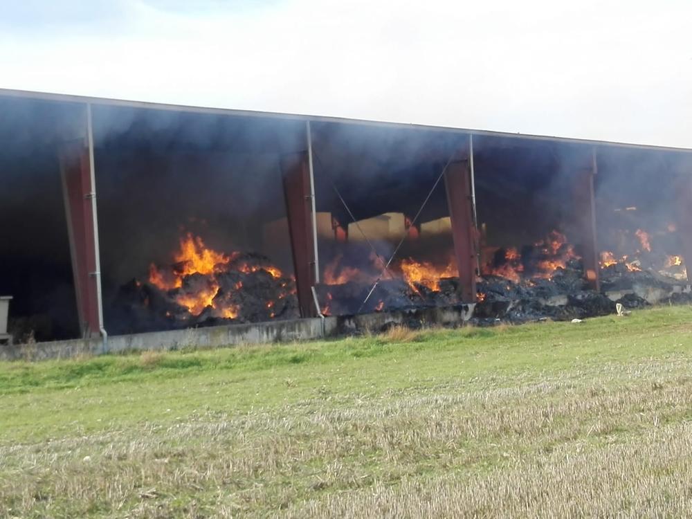 Varias de las naves de las instalaciones están totalmente destruidas por el fuego.