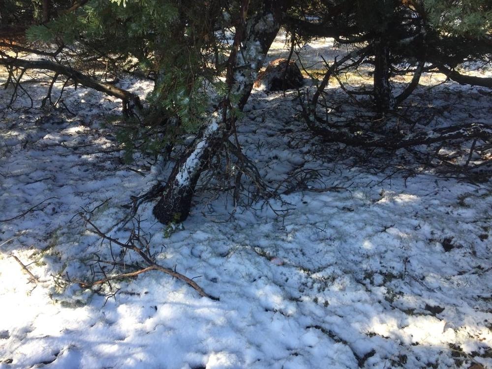 Primera nevada en el San Millán y heladas en la Demanda