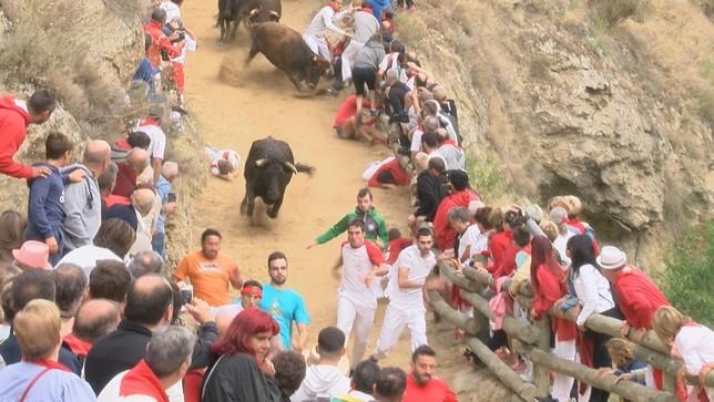 Cinco heridos leves y una vaca 'remolona' en el tercer Pilón