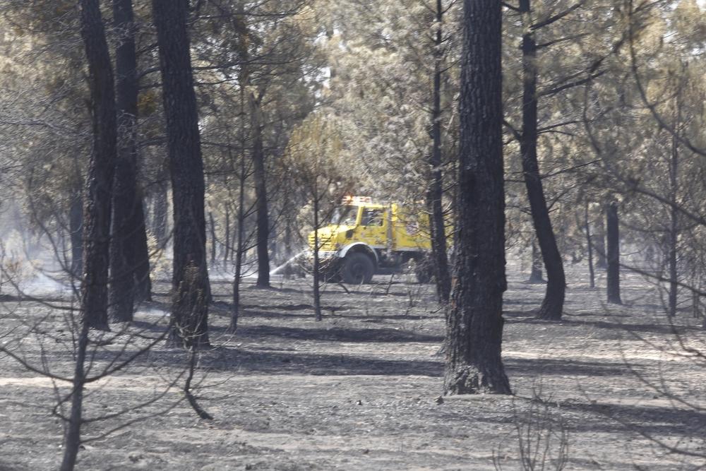 Consecuencias del incendio de Traspinedo