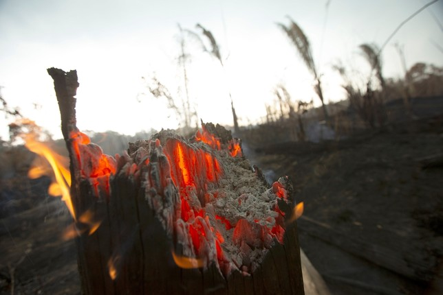 Brasil aceptará ayuda para la Amazonia si puede elegir su us