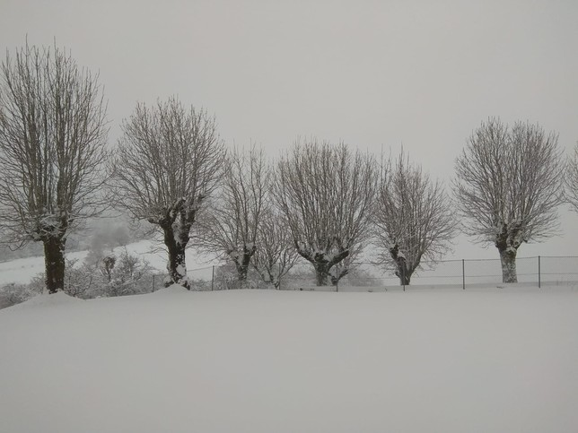La nieve ya cae en Navarra, en aviso naranja desde mañana
