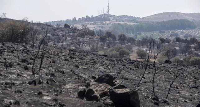 Unas 1.600 hectáreas quemadas en la Bastida y Montesión