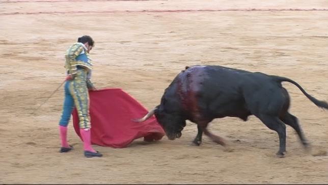 Revelaciones del mundo del toreo debutarán en San Fermín Archivo NATV