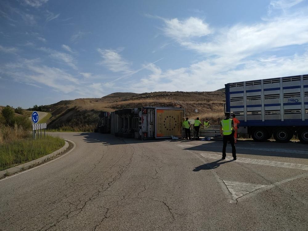 Vuelca un camión que transportaba cerdos