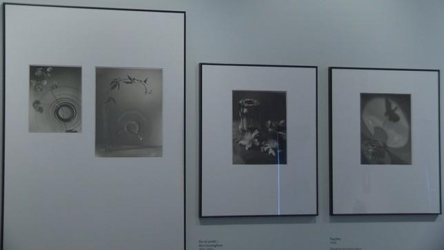 El Museo de Navarra estrena muestra con aires contemporáneos