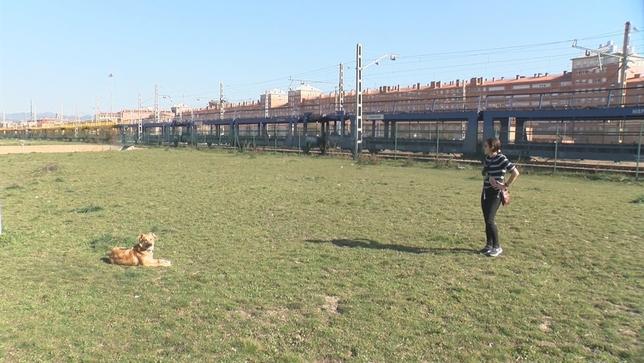 Alerta por la aparición de cebos con alfileres para perros