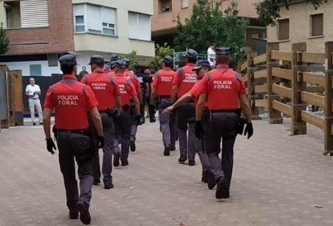 El TC admite el recurso contra la Ley Foral de Policías