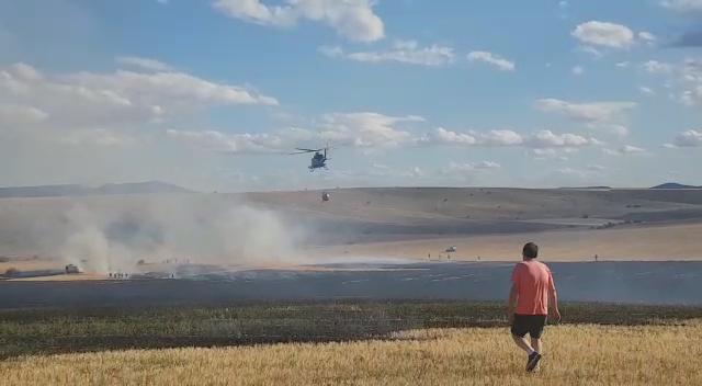 El fuego arrasa 8 hectáreas en Noviercas