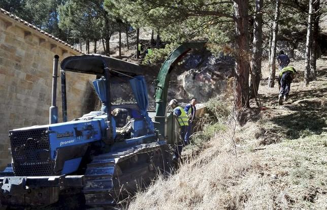 El plan de empleo forestal alcanza su cuarta edición