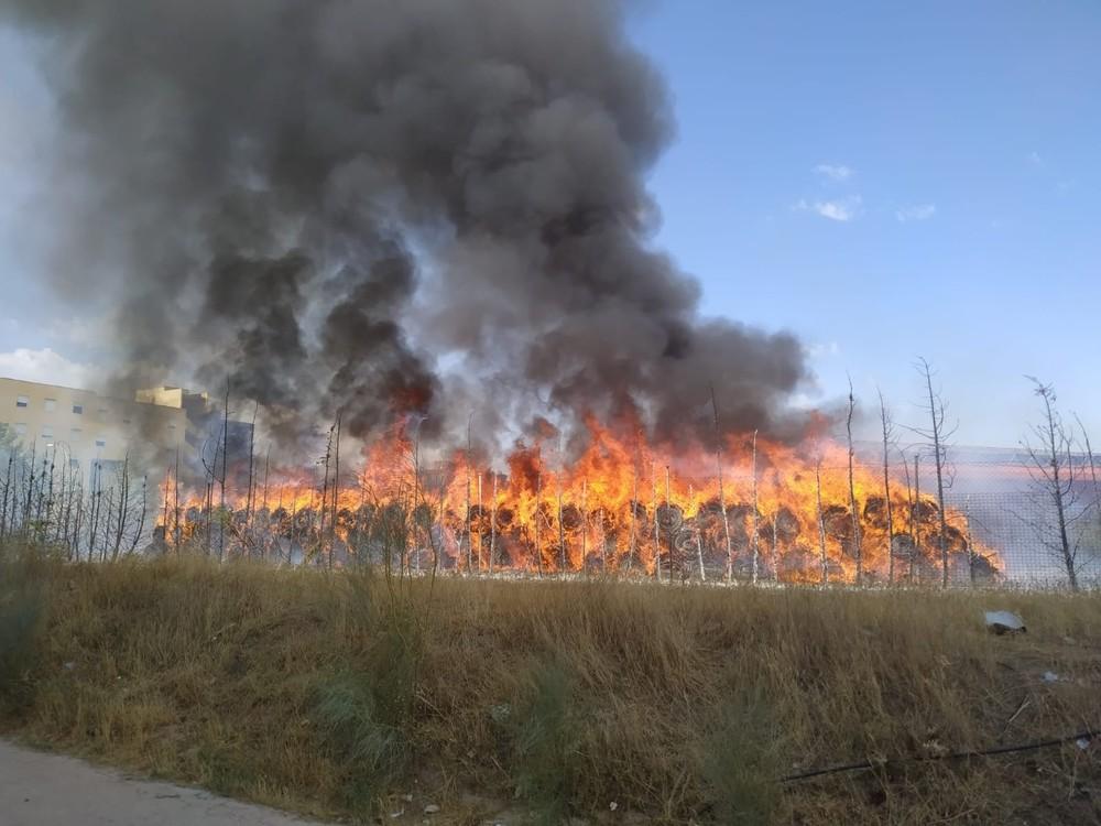 Incendio de arizónicas y 82 rollos de césped en el Polígono