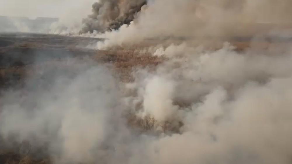 Un voluntario navarro se adentra en el incendio del Amazonas