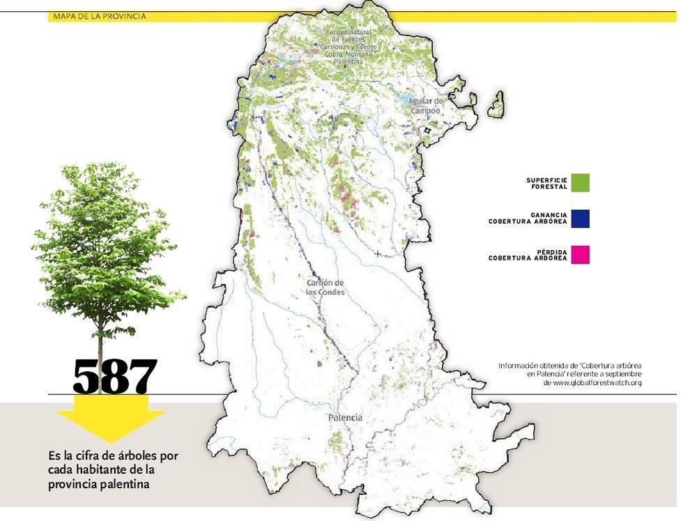 Palencia Mapa Provincia Vectorial