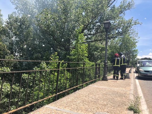 Los bomberos intervienen en un incendio por el polen
