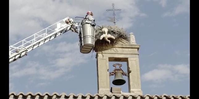 Los bomberos rescatan una cigüeña de La Soledad