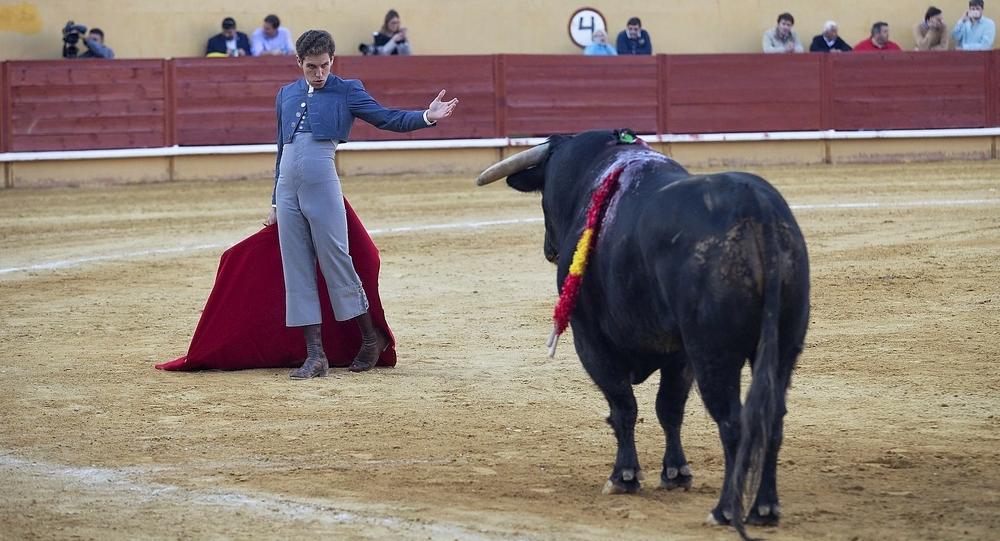 Triunfal regreso de los toros en Ávila