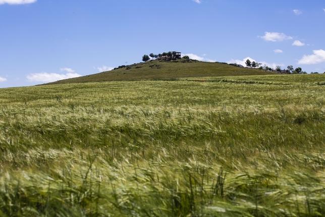El cerro y la ermita de San Isidro, de Interés Local Rueda Villaverde