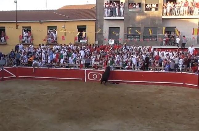 El toro salta por segunda vez