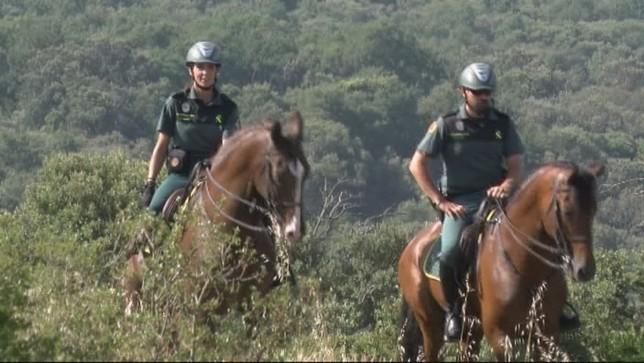 Jinetes velan por la seguridad de los peregrinos en Navarra NATV