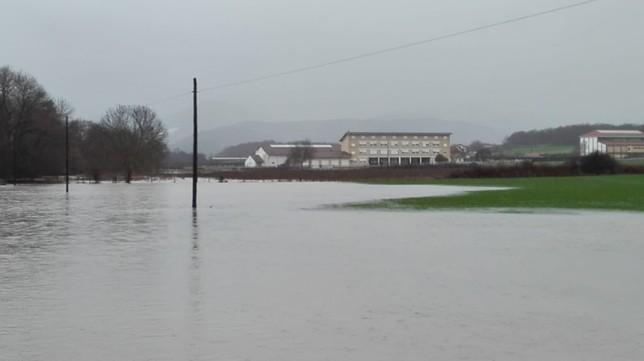 Desalojado el C.P. Larraintzar por el desbordamiento del río