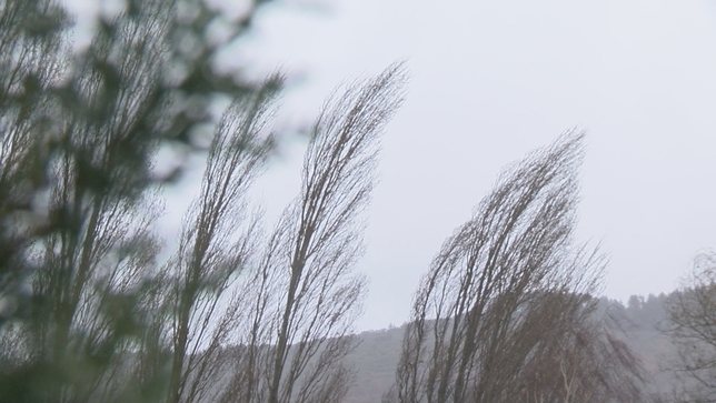 Riesgo en toda Navarra por la posibilidad de fuertes vientos