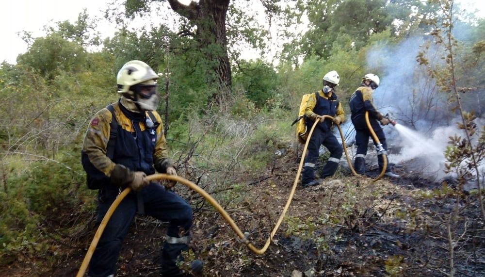 Un rayo, posible causa de un incendio de robles en Eulate