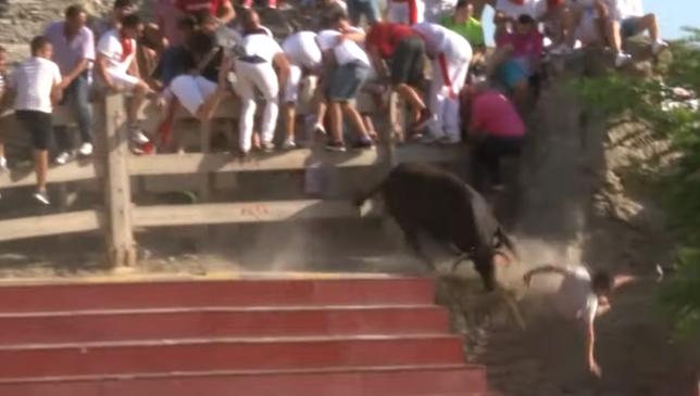 Susto en Arguedas: una vaca embiste a un mozo y cae sobre él