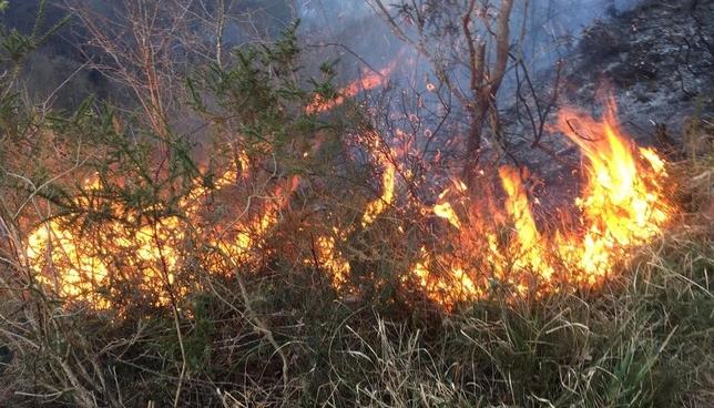 Se complica el incendio en Goizueta y piden un hidroavión Bomberos de Navarra
