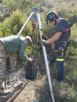 Rescatan un perro que se había caído a un pozo en Manzanillo