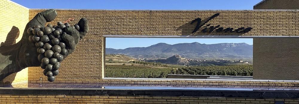 Vista panorámica de los viñedos que componen el paisaje de la localidad riojana de Briones.