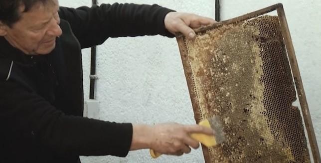 El sangüesino Baigorri, una vida ligada a la apicultura