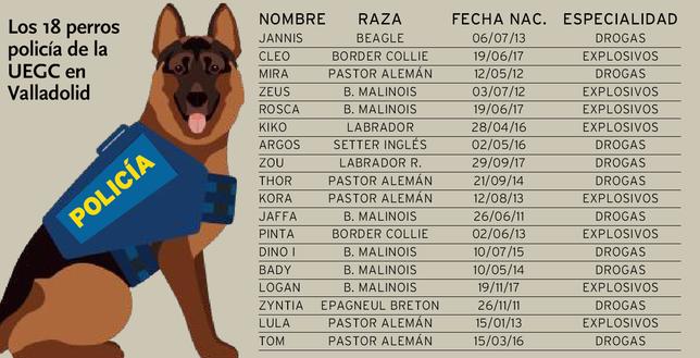La Unidad de Guías Caninos se mudará a Valladolid en 2020