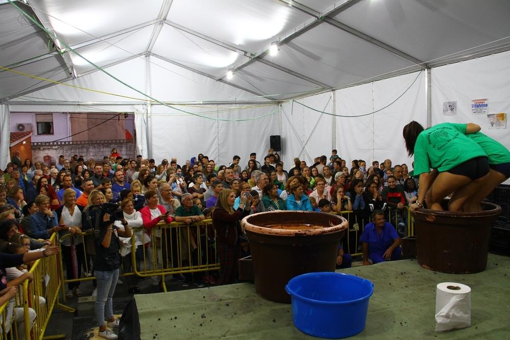 Pisando uva en la Fiesta de la Vendimia de Cebreros